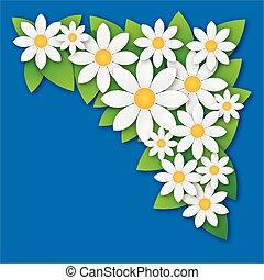 Flower chamomile spring background