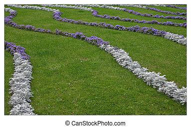 Flower curves