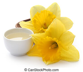 Flower daffodil with extract in a bowl