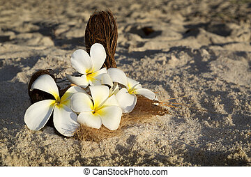 Flower decoration for wedding at the beach, Seychelles