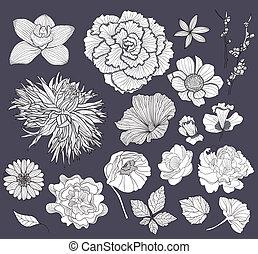Flower design elements set
