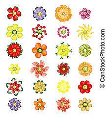 Flower design set made from fruits