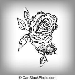 flower., drawing., rose, main., illustration, vecteur, monochrome