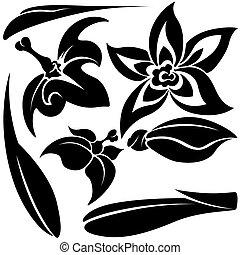 Flower elements D