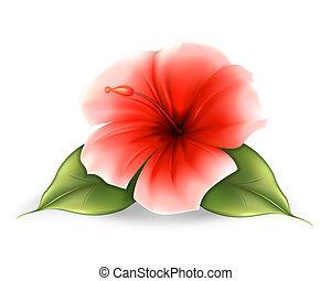 Flower, eps10