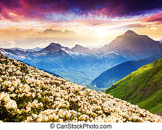 flower - Fantastic mountain landscape with colorful cloud. ...
