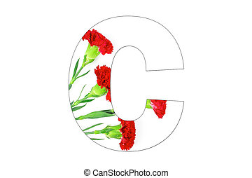 Flower font Alphabet a-z made of Carnation flowers on white background