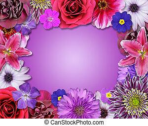 Flower Frame Pink, Purple, Red Flowers