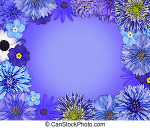 Flower Frame with Blue, Purple Flowers Isolated on Blue...
