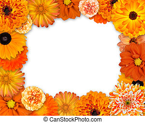 Flower Frame with Orange Flowers on White