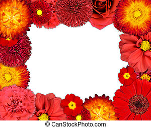 Flower Frame with Red Flowers on Blank Background