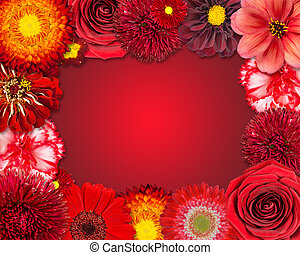 Flower Frame with Red Flowers on Purple Background