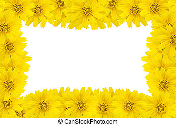 Flower frame with space for copy