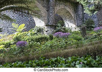 flower garden in Monte Madeira