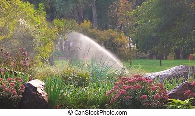 Flower garden in the park. Water sprinkler in a garden...