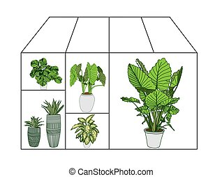 Flower greenhouse or greenhouse. Winter Garden. Gardening ...
