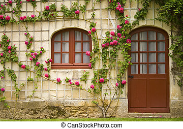 Flower House - A house with beautiful flowers on the wall