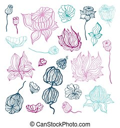 flower., ilustração, abstratos, isolado, mão, vetorial, desenhado