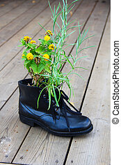 Flower in boot