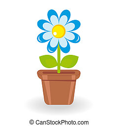 Flower in flowerpot on white background