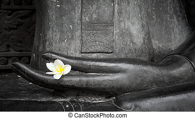 flower in hand image of buddha