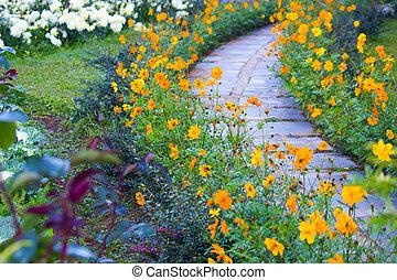 Flower in the garden with stone walkway