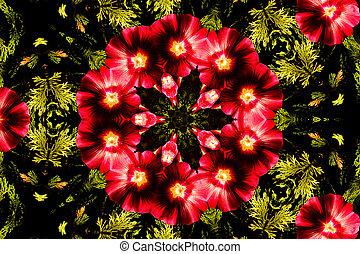 Flower kaleidoscope resembling a mandala - Kaleidoscopic ...