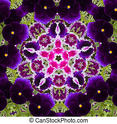 Flower kaleidoscope resembling a mandala - Kaleidoscopic...
