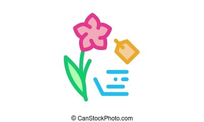 flower label price Icon Animation. color flower label price animated icon on white background