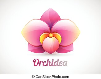 flower logo vector illustration