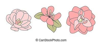 flower., main, illustration, dessiné, vecteur