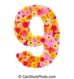 flower number eight. Floral element of colorful alphabet made from gerbera