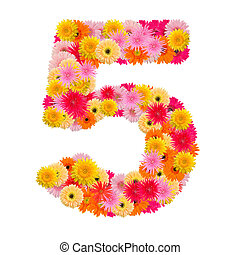 flower number five. Floral element of colorful alphabet made from gerbera