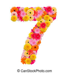 flower number seven. Floral element of colorful alphabet made from gerbera