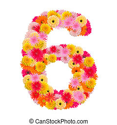flower number six. Floral element of colorful alphabet made from gerbera