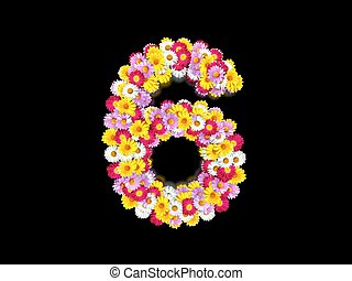 Flower Number Six. Floral Element of Colorful Letters made from Marguerites