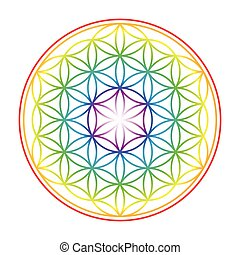 Flower Of Life Colorful Vibrant