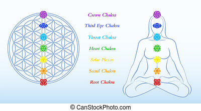 Flower of life and meditating woman, both with symbols of the seven main chakras plus description. Vector illustration on blue gradient background.