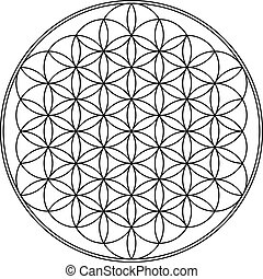 Flower of life geometry vector illustration