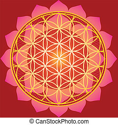 Flower of life in red lotus - Flower of life in red...
