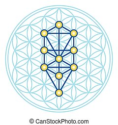 Flower of Life in Tree of Life illustration