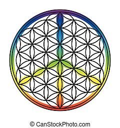 Flower Of Life Peace Symbol Superim