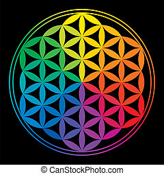 Flower Of Life with rainbow colors, a geomtric figure, composed of multiple evenly-spaced, overlapping circles. A decorative motif since ancient times, forming a flower-like pattern with the symmetrical structure of a hexagon. Isolated vectors on black background.