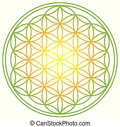 Flower of Life with spring energy colors