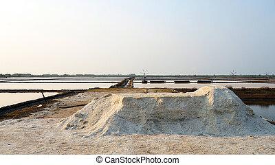 flower of sea salt in salt pan farm, salt field with morning sun