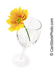 Flower on glass