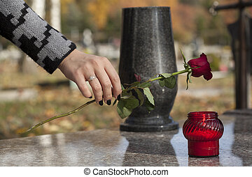 Flower on the grave - Woman's hand laying red rose on grave