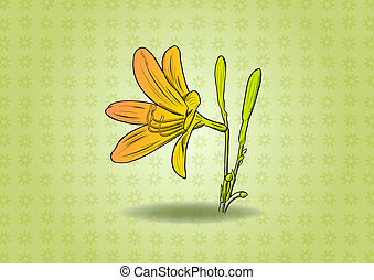 flower on the green background
