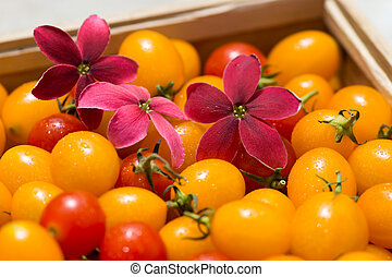 Flower on the small red and yellow tomato.