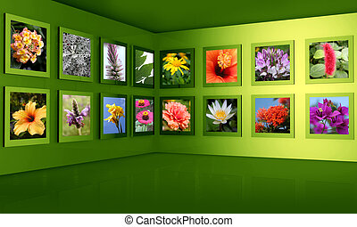 Flower photos display on the wall combine with 3d frame and wall